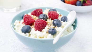 cottage cheese diets weight loss