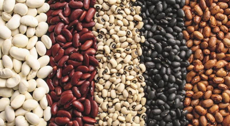 Calories in beans